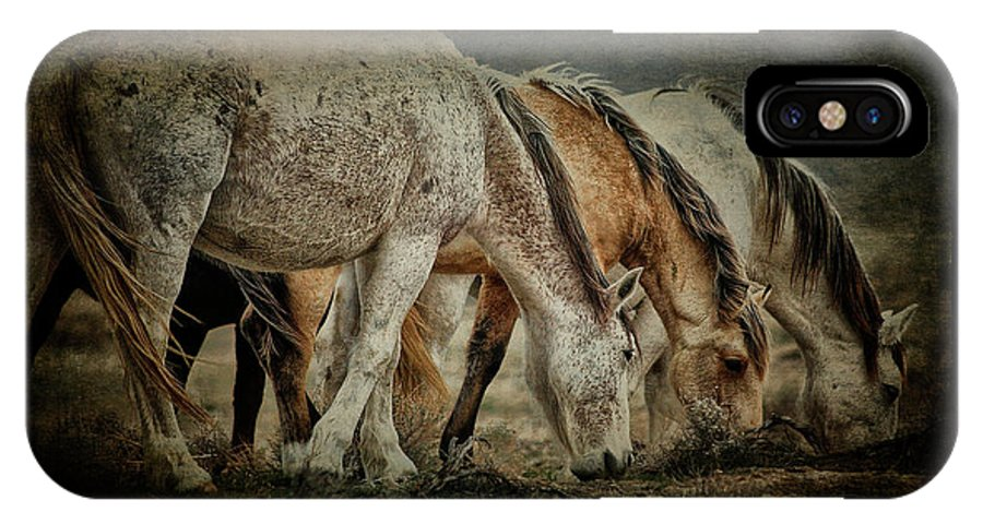 Horses IPhone X Case featuring the photograph Horses 39 by Ingrid Smith-Johnsen