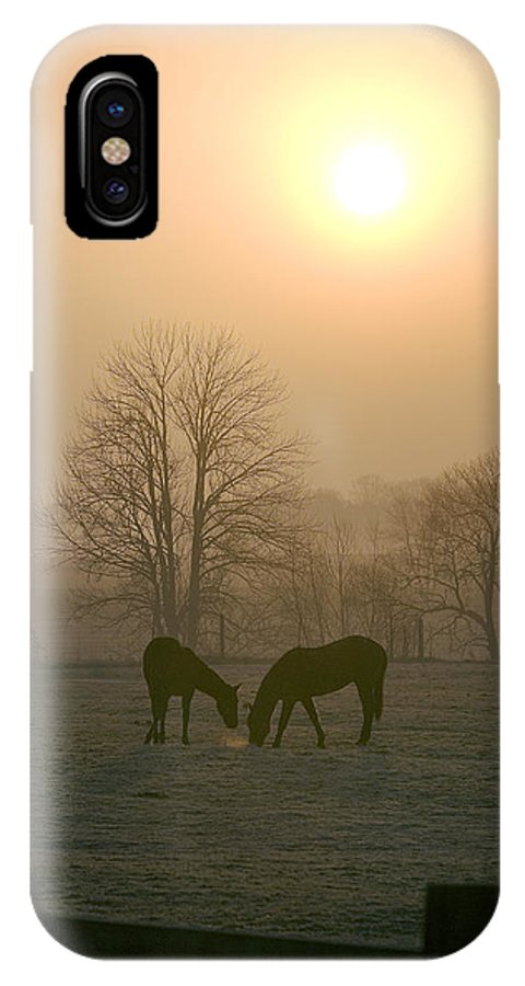 Horse IPhone X Case featuring the photograph Horses At Sunrise-1 by Steve Somerville