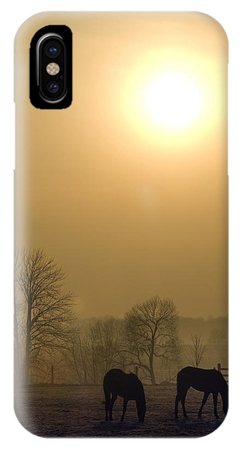 Landscape IPhone X Case featuring the photograph Horses At Sunrise-2 by Steve Somerville