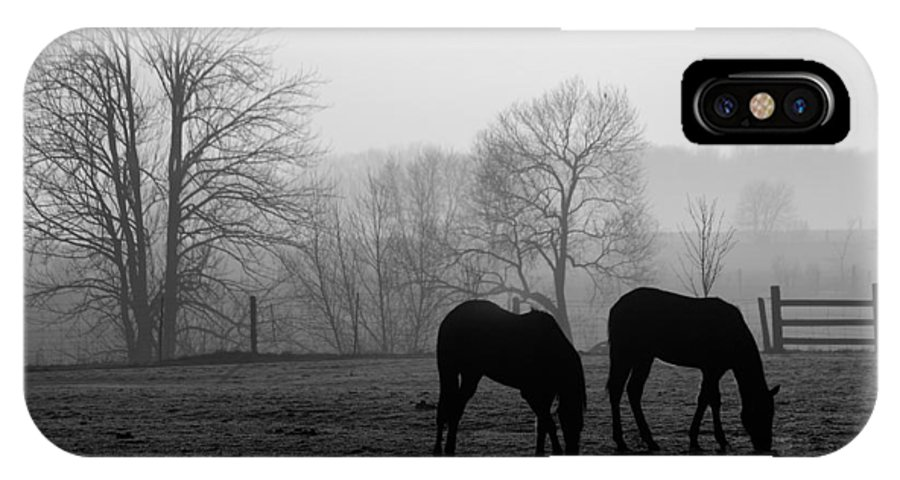 Horse IPhone Case featuring the photograph Horses In Field B And W by Steve Somerville