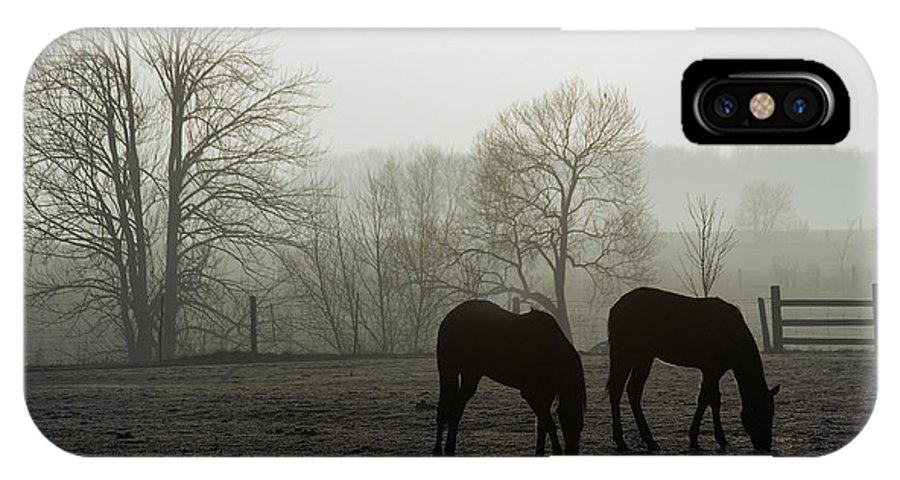 Horse IPhone Case featuring the photograph Horses In Field by Steve Somerville