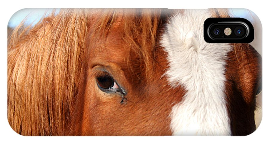 Horse IPhone X Case featuring the photograph Horse's Mane by Thomas Marchessault