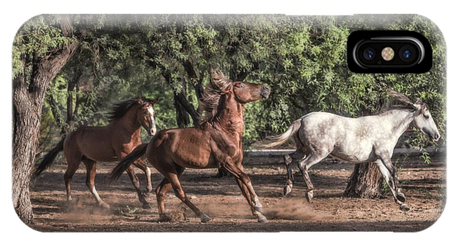 Wild Horses IPhone X Case featuring the photograph Horsing Around by Lori Figueroa