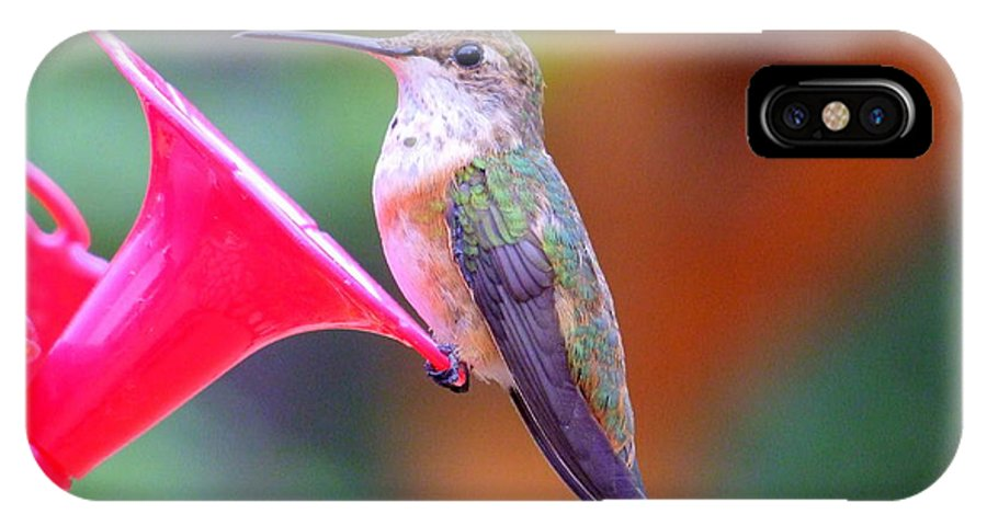Bird IPhone X Case featuring the photograph Hummingbird - 18 by Mary Deal