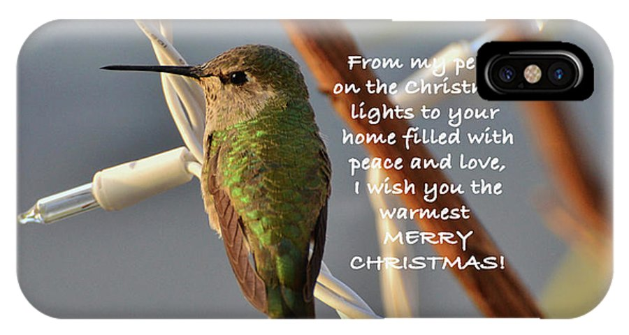 Christmas Wished IPhone X Case featuring the photograph Hummingbird Christmas Card by Debby Pueschel