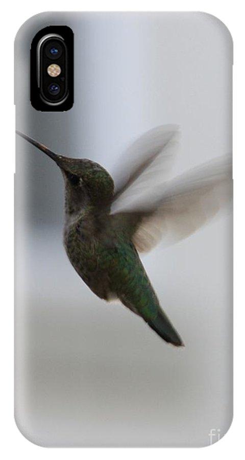 Hummingbird IPhone X Case featuring the photograph Hummingbird In Flight by Carol Groenen