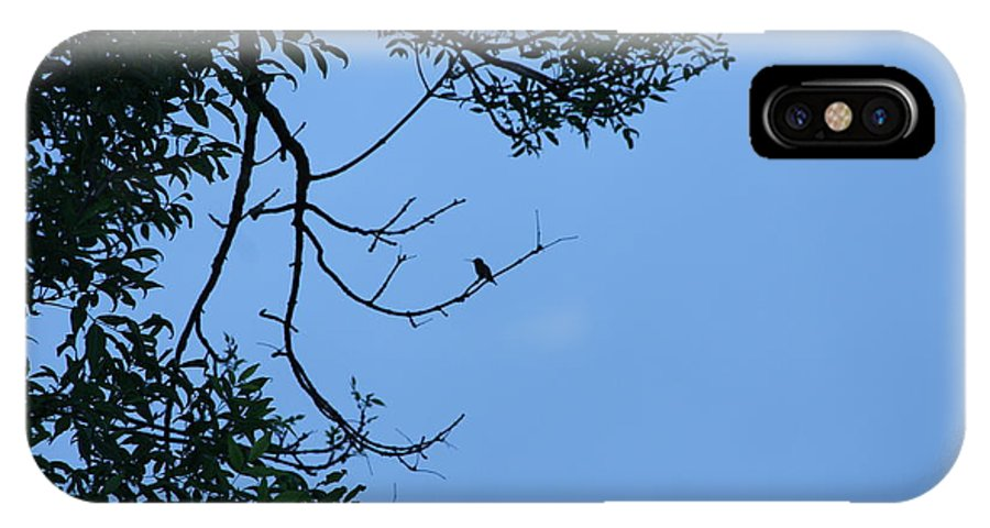 Hummingbird IPhone X Case featuring the photograph Hummingbird Silhouette by Michelle Miron-Rebbe