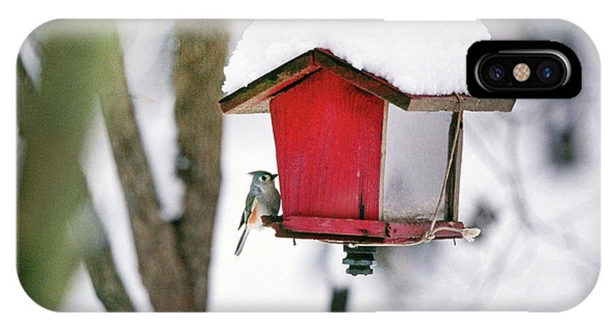 Small IPhone X Case featuring the photograph A Hungry Chickadee by Buddy Mays
