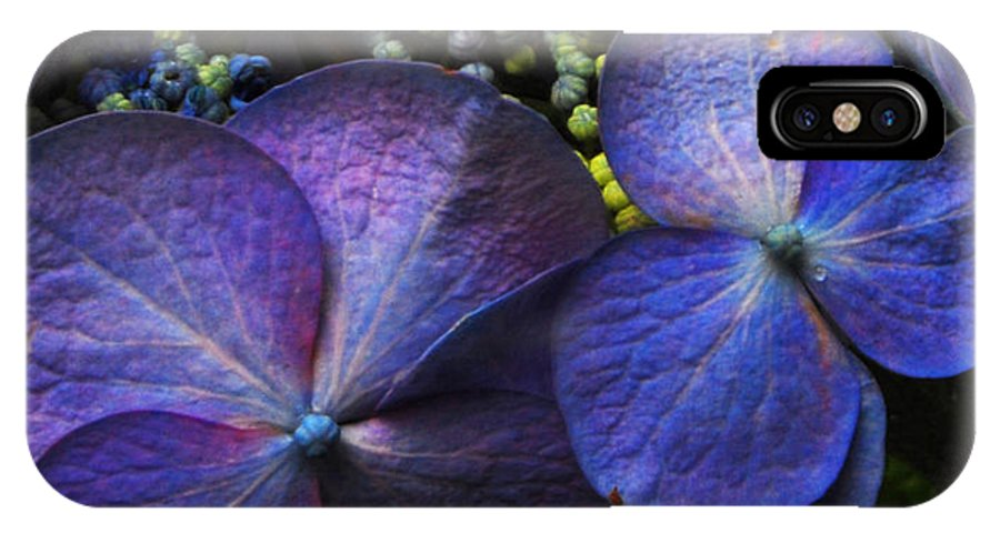 Blue IPhone X Case featuring the photograph Hydrangea Blue by Jean Booth