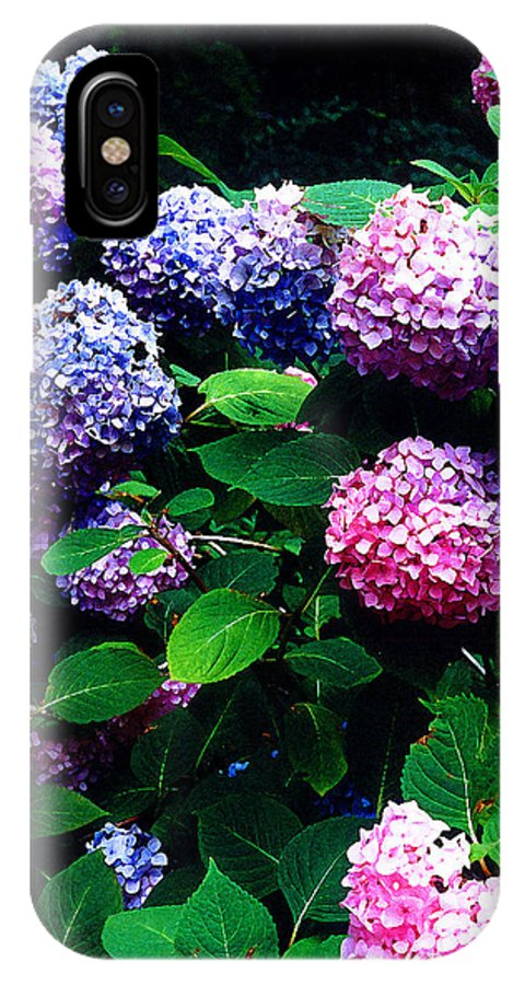 Flowers IPhone X Case featuring the photograph Hydrangeas by Nancy Mueller