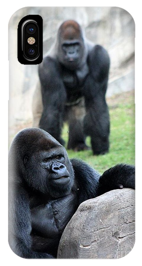 Gorillas IPhone X Case featuring the photograph I Always Feel Someone Watching by Mesa Teresita
