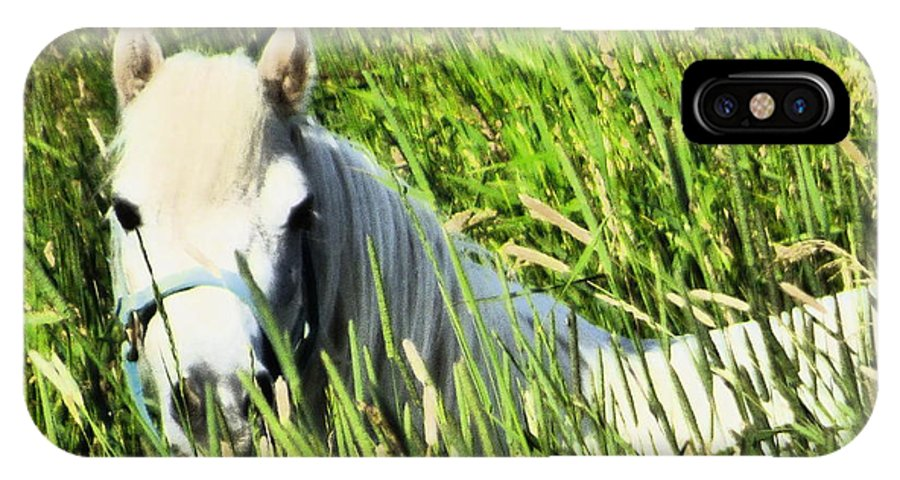 Landscape Horse Animal Maine Farm Field IPhone X Case featuring the photograph I Art by Scott Welton