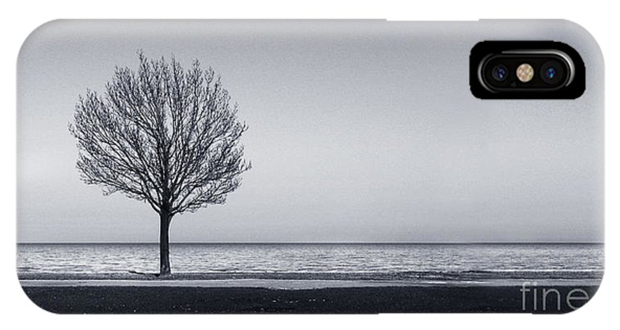 Tree IPhone Case featuring the photograph I Didnt Hear You Leaving by Dana DiPasquale