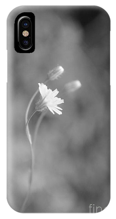 Eva Maria Nova IPhone X Case featuring the photograph I Feel by Eva Maria Nova