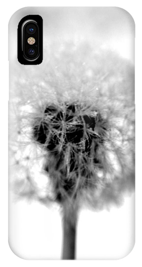 Dandelion IPhone X Case featuring the photograph I Wish In Black And White by Valerie Fuqua