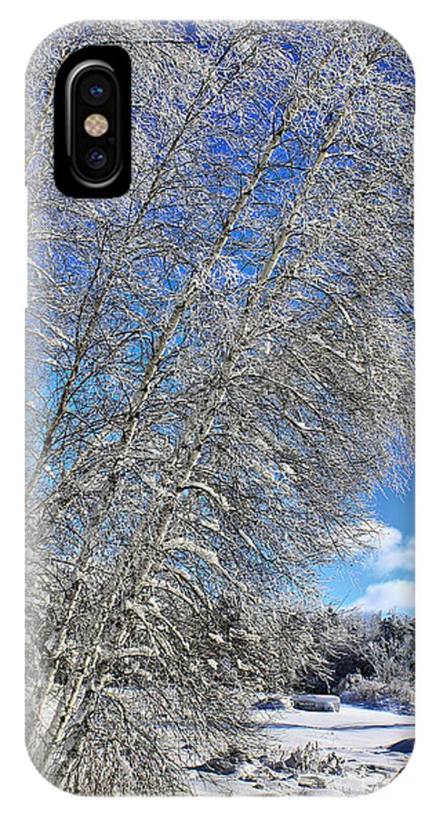 Snow IPhone X Case featuring the photograph Ice Laden Birches by Deborah Benoit