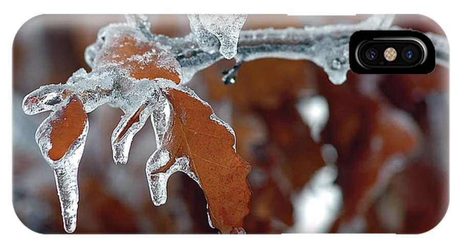 Ice IPhone Case featuring the photograph Iced Leaves by Steve Somerville
