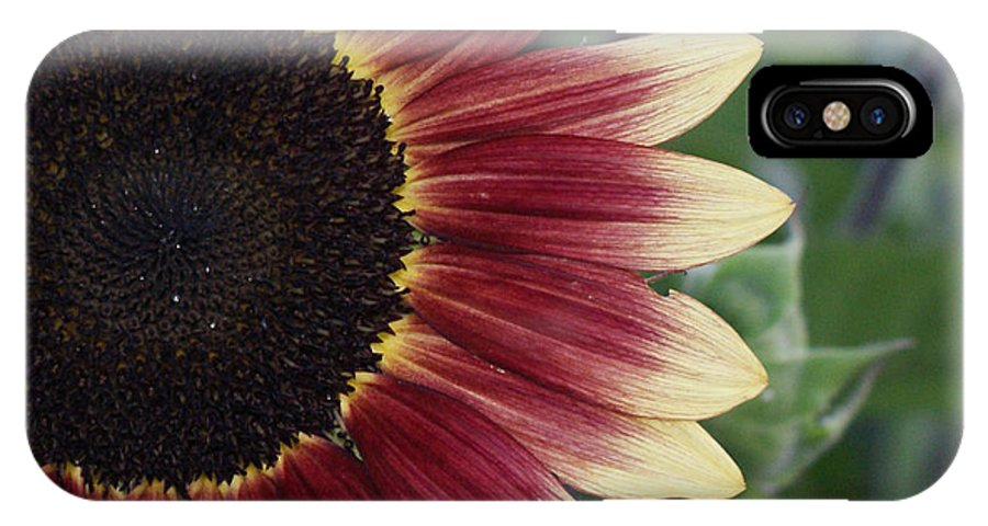 Photography IPhone Case featuring the photograph If It Makes You Happy by Shelley Jones