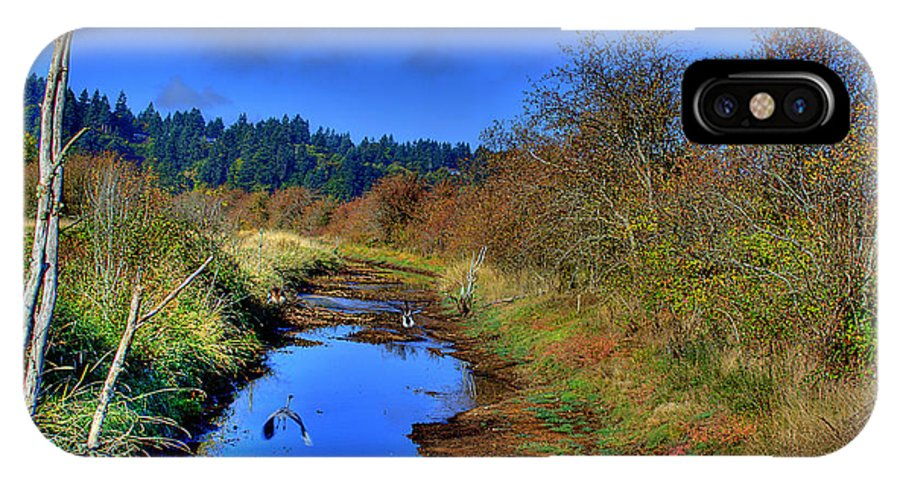 Nisqually IPhone X / XS Case featuring the photograph In Flight by David Patterson