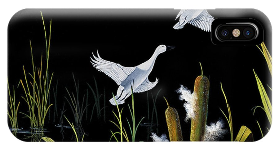 Birds IPhone X Case featuring the painting In Flight by Don Griffiths