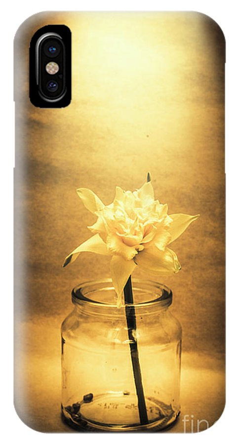 Flower IPhone X Case featuring the photograph In Light Of Nostalgia by Jorgo Photography - Wall Art Gallery