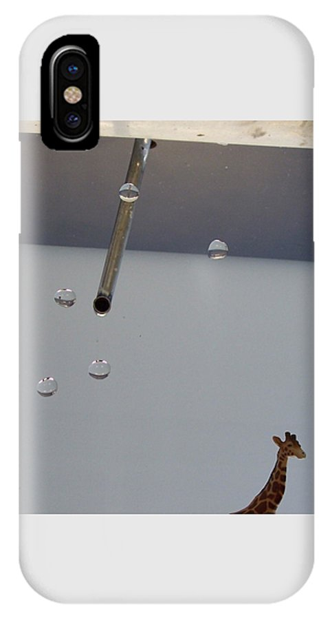 Giraffe IPhone X Case featuring the photograph In The Sink by Michelle Miron-Rebbe