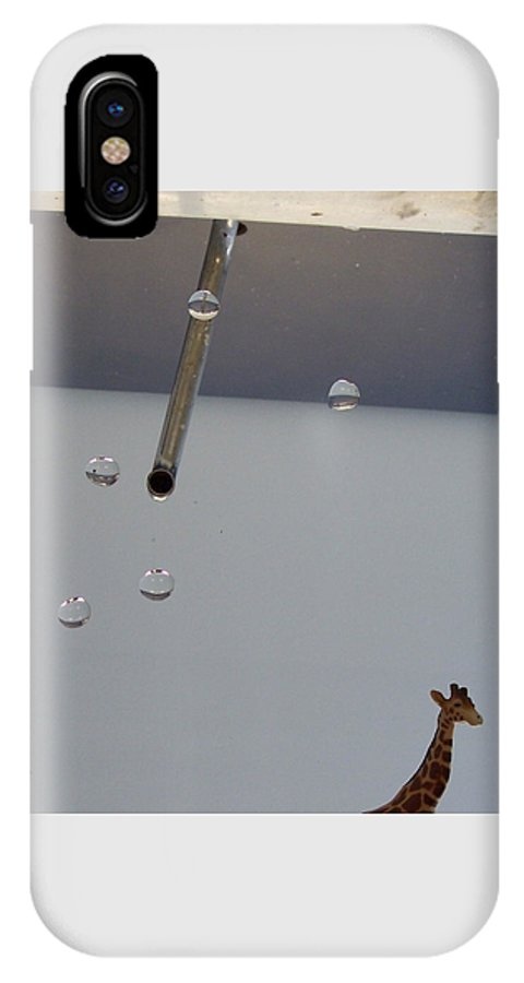 Giraffe IPhone Case featuring the photograph In The Sink by Michelle Miron-Rebbe
