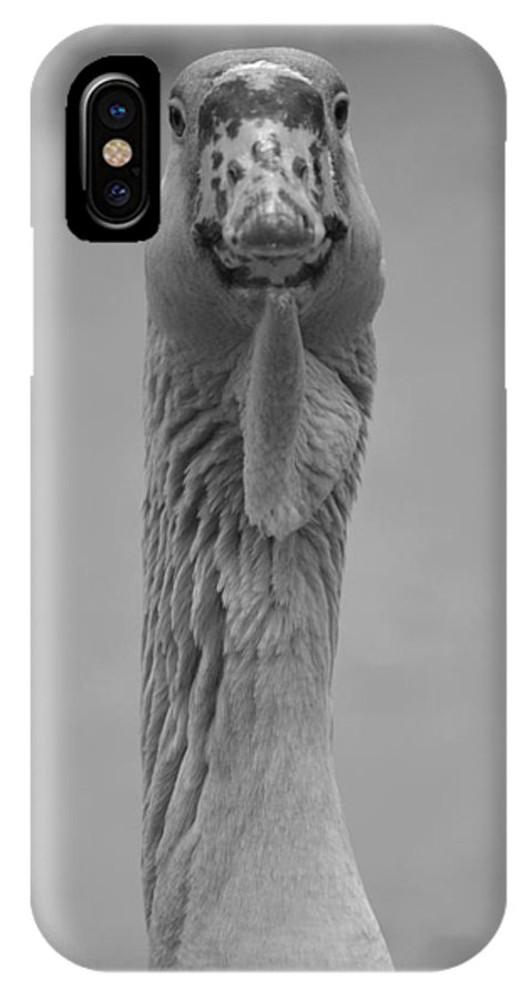 Goose IPhone X / XS Case featuring the photograph In Your Face B N W by Richard Andrews