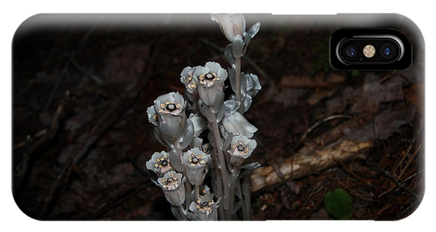 Flowers IPhone X Case featuring the photograph Indian Pipe by Sheila McDowell