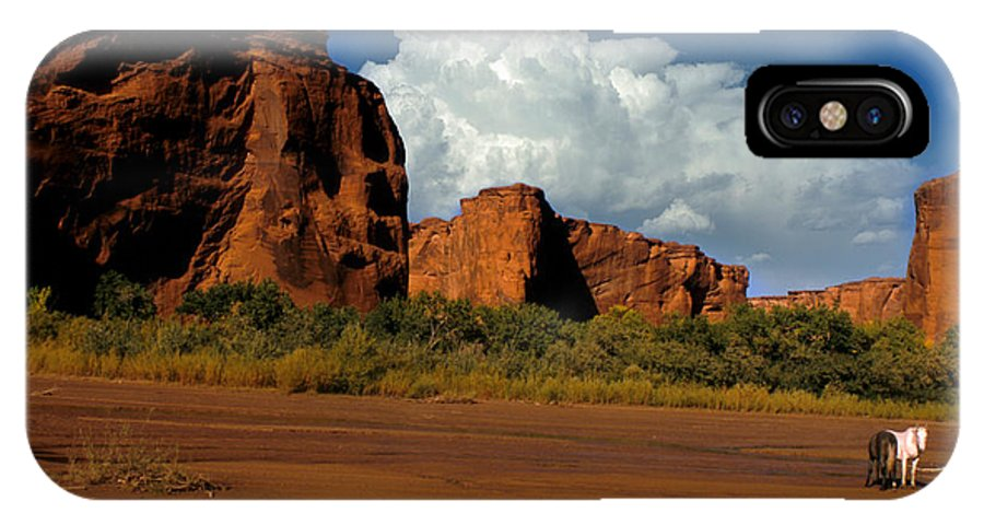 Horses IPhone X Case featuring the photograph Indian Ponies In The Canyon by Jerry McElroy