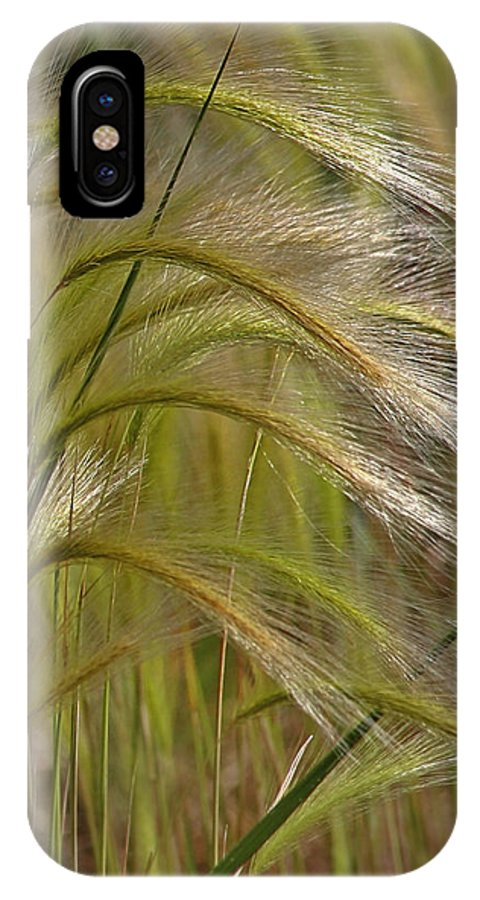 Grass IPhone X Case featuring the photograph Indiangrass Swaying Softly With The Wind by Christine Till