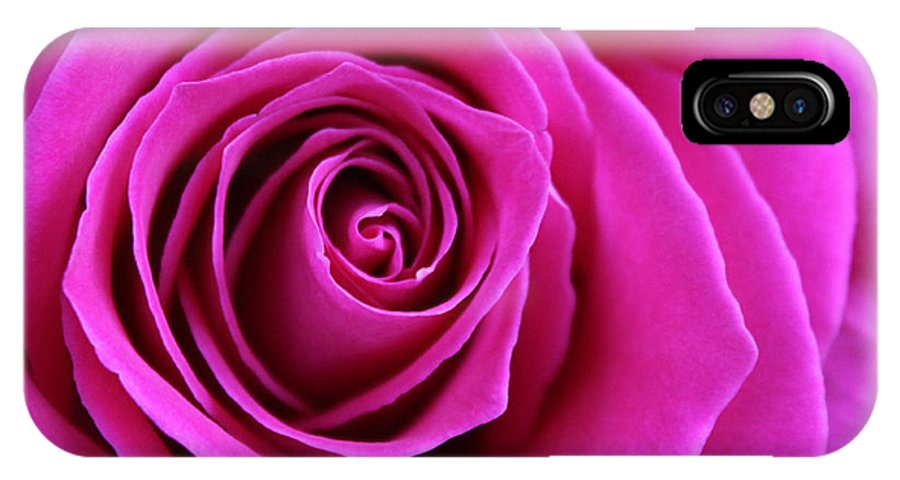 Rose IPhone X Case featuring the photograph Into The Rose by Laura Martin