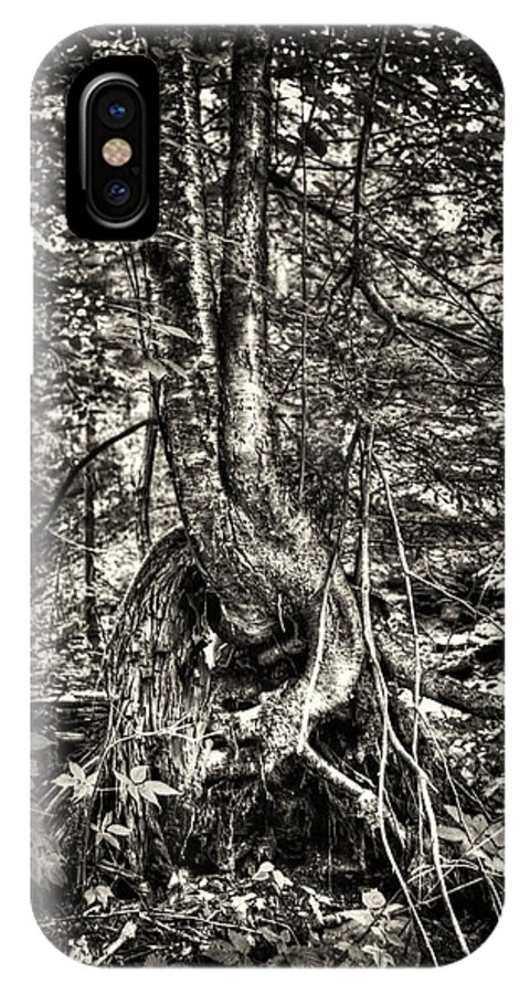 Hdr IPhone X Case featuring the photograph Intwined by Scott Wyatt
