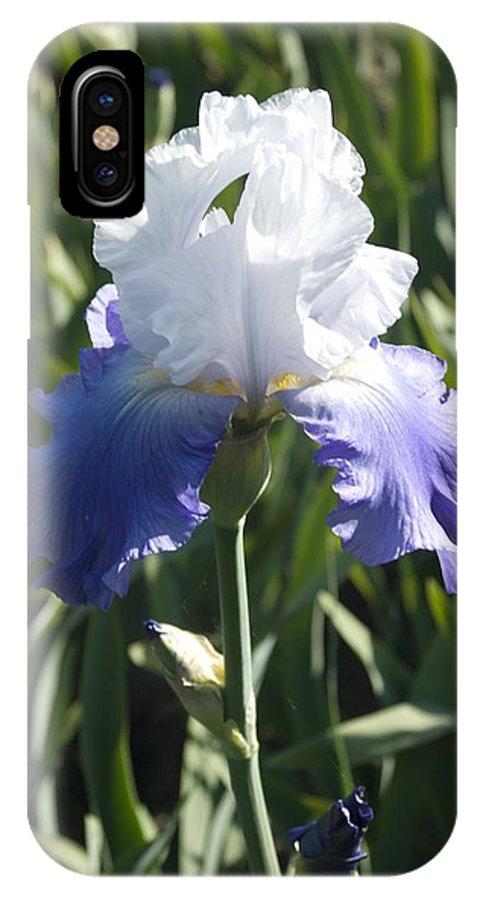 Iris IPhone X Case featuring the photograph Iris 4 by Sara Stevenson