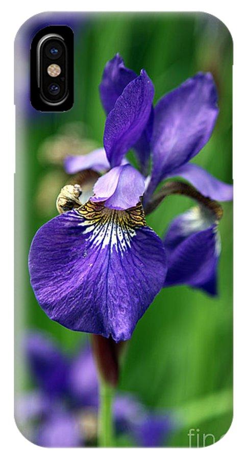 Iris IPhone X Case featuring the photograph Iris by Amanda Barcon