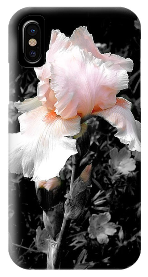 Flower IPhone X Case featuring the photograph Iris Emergance by Steve Karol