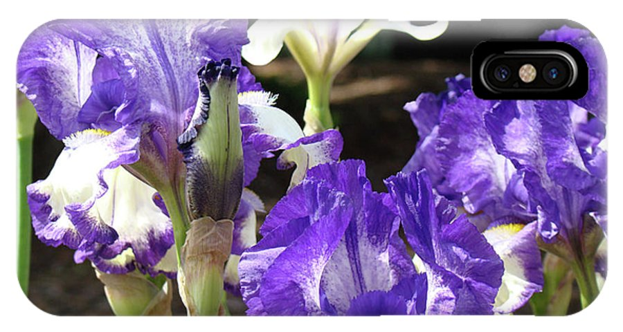 Iris IPhone X Case featuring the photograph Iris Flowers Floral Art Prints Purple Irises Baslee Troutman by Baslee Troutman
