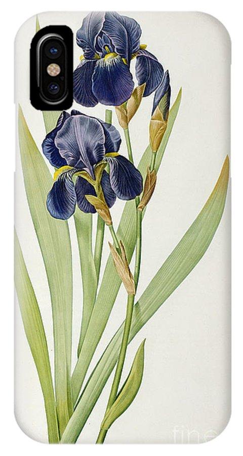 Iris IPhone X Case featuring the painting Iris Germanica by Pierre Joseph Redoute