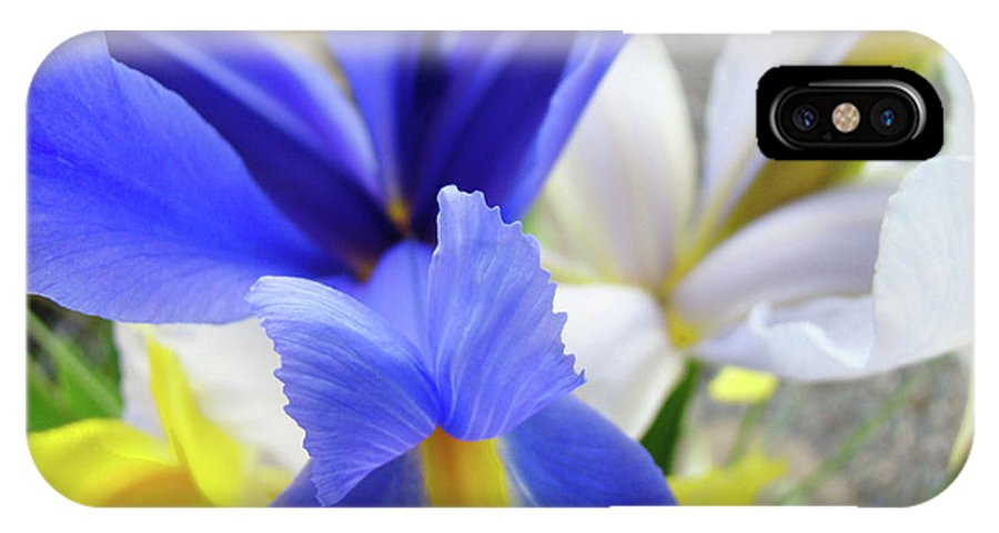 �irises Artwork� IPhone X Case featuring the photograph Irises Flowers Artwork Blue Purple Iris Flowers 1 Botanical Floral Garden Baslee Troutman by Baslee Troutman