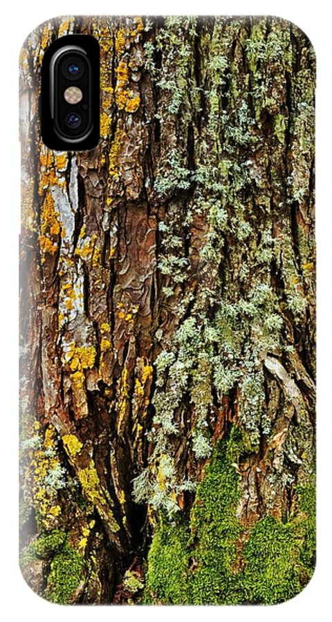 Tree IPhone X Case featuring the photograph Island Moss by JAMART Photography