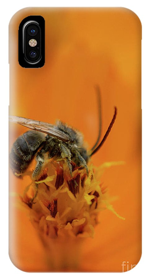 Larva IPhone X Case featuring the photograph It Is In Here by Jack Norton