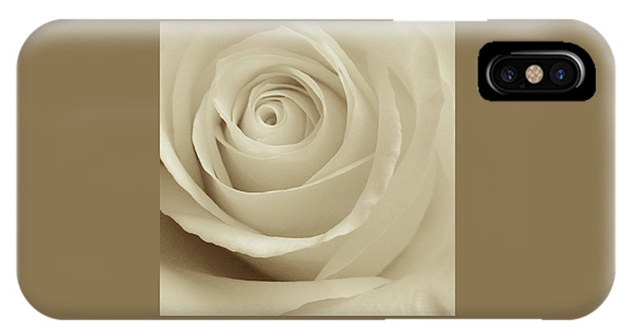 Sepia Rose IPhone X Case featuring the photograph Ivory Rose by Don Spenner