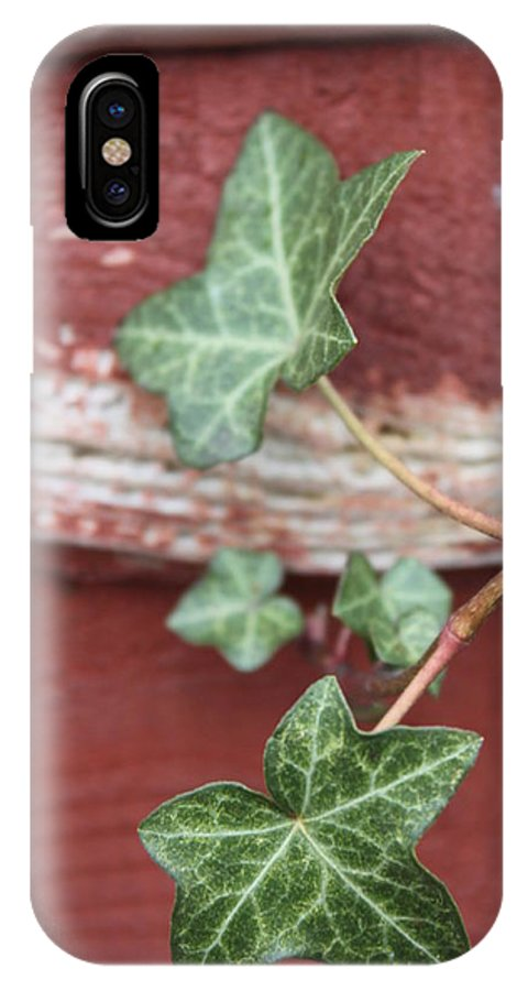 Ivy IPhone X Case featuring the photograph Ivy by Lauri Novak