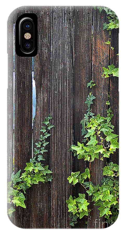 Clay IPhone Case featuring the photograph Ivy On Fence by Clayton Bruster