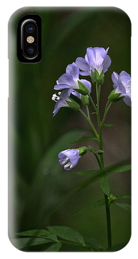 Jacobs Ladder IPhone X Case featuring the photograph Jacob's Ladder Upper Buffalo Wilderness by Michael Dougherty