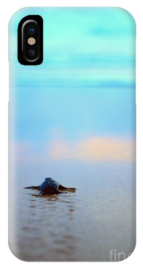 Afternoon IPhone X Case featuring the photograph Journey by Arie Toursino
