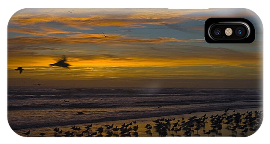 Beach Morning Sunrise Ocean Bird Birds Seagulls Gull Gulls Sand Water Wave Waves Cloud Sky IPhone X Case featuring the photograph Joyful Gathering by Andrei Shliakhau