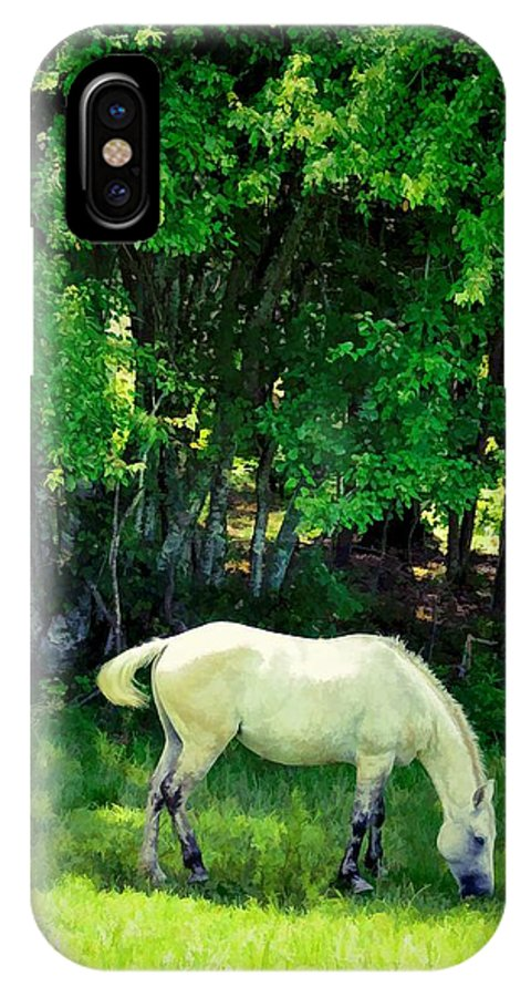 Animals IPhone X Case featuring the photograph Just A Little Shade by Jan Amiss Photography
