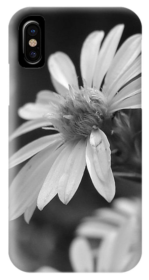 IPhone X Case featuring the photograph Just Black And White by Luciana Seymour