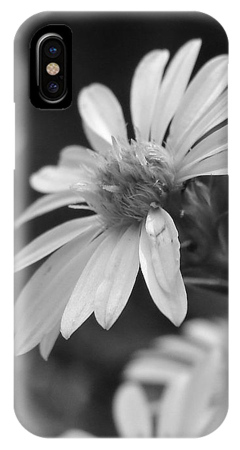 IPhone X / XS Case featuring the photograph Just Black And White by Luciana Seymour